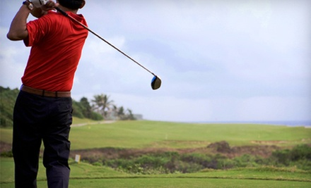 18-Hole Round of Golf for Two or Four with Cart and Pro-Shop Credit at Agawam Municipal Golf Course (Up to 57% Off)
