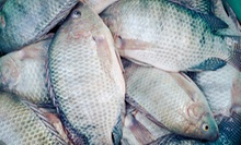 Fresh Red Fish or Tilapia, or Catch-and-Release Fishing for One Adult at Inland Ocean (Half Off)