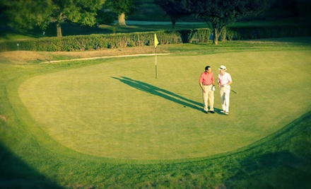 One, Two, or Four 60-Minute Private Golf Video Lessons at The Golf Boot Camp (Up to 66% Off)