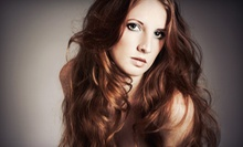Root-Touchup Color or Partial Highlights with a Haircut or a Blowout, or Year of Blowouts at Blush Salon (Up to 68% Off)
