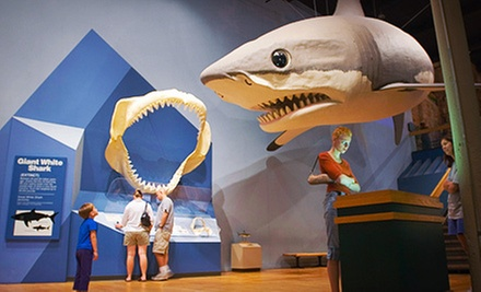 One-Year Individual or Family Membership to the South Carolina State Museum (Up to 51% Off)