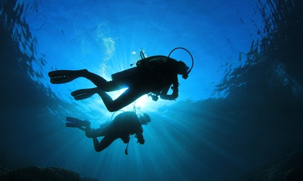 $299 for a PADI Open Water Diver Certification Course at Bubbles Below ($599 Value)