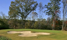 18-Hole Round of Golf on the Weekend or Weekday for Two or Four at Twin Bridges Golf Club in Gadsden (Up to Half Off)