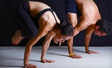 20 Yoga Classes or One Year of Unlimited Classes at YogaPoser at Fred Segal Studio (Up to 92% Off)