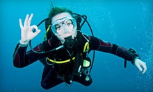 $169 for a Scuba-Certification Package from Adventure Diving ($399 Value)