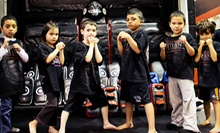 One Month of Unlimited Martial-Arts Classes for One or Two Children at Titan Mixed Martial Arts (Up to 80% Off)