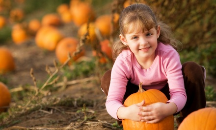 Kids Zone Passes, Lunches, and Take-Home Pumpkin for Families of Four or Six at Huffman Farms (52% Off)