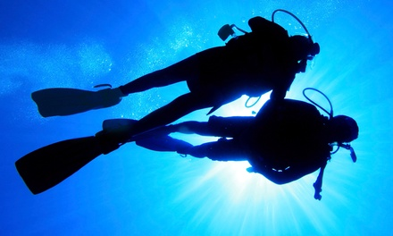 Learn to Snorkel, Intro to Scuba, Scuba Skills Update, or Scuba Refresher Class at United Divers (Up to 51% Off)