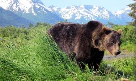 Alaska Wildlife Conservation Center and Turnagain Arm Tour for One, Two, or Three (Up to 55% Off)
