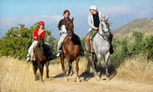 Group Horseback Ride for One, Two, or Four at The Dakota Ranch (Up to 53% Off)