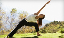 5 or 10 Lakefront Yoga or Outdoor Boot-Camp Classes from The Yoga Boutique (Up to 67% Off)