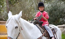 Horseback-Riding Lesson for One or Two, or One or Five Days of Summer Camp at A Bit of Luck Farm (Up to 59% Off)