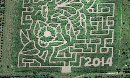 Corn Maze Admission for Four or Six at Montgomery Orchard (Up to 56% Off)