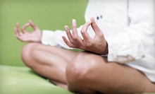 10 or 15 Classes at The Yoga Studio (74% Off)