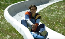 Two Rides on the Alpine Slide or Half-Day Adventure Pass for Two at Mt. Hood Skibowl (Half Off)