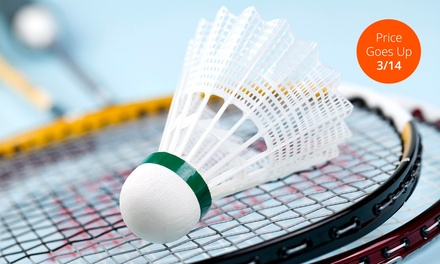Badminton for Two or Four at Bay Badminton Center (Up to 54% Off). Four Options Available.