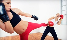 10 or 20 Kickboxing Classes at Stephen's Karate and Kickboxing Center (Up to 80% Off)