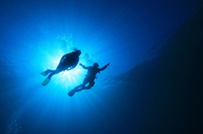 $189 for a Scuba-Certification Course at Sea Stallion Scuba Outfitters ($495 Value)