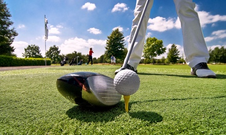 Nine-Hole Round of Golf for Two or Four with Pro-Shop Snack Credit at Summerfield Golf Course (Up to 44% Off)