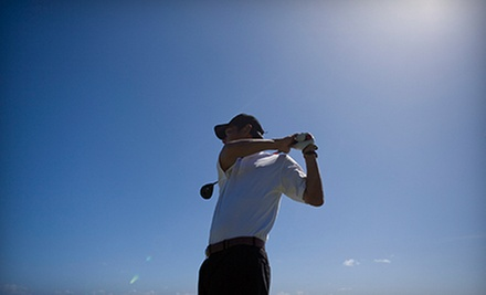 Two or Three 30-Minute Golf Lessons with Video Swing Analysis at Wildhorse Golf Academy (Up to 56% Off)