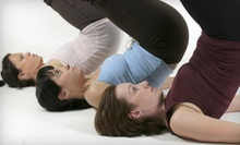 Group and Private BarSculpt or Pilates Classes at Pure Movement (Up to 51% Off). Three Options Available.