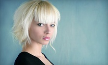 $49 for Haircut, Full Highlights, and Style at Studio 23 ($99 Value)