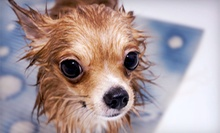 Three Self-Serve Washes for a Small, Medium, or Large Dog at Doggie Deli & Spa (Up to 52% Off)