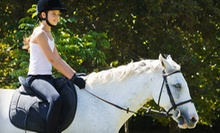 Two or Four 30-Minute Private Horseback-Riding Lessons at Stepping Stone Farm (Up to 54% Off)