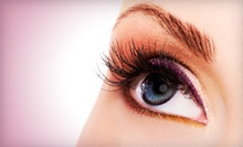 Full Set of Eyelash Extensions with Optional Black Diamond Coating at Beauty Secrets (Up to 74% Off)