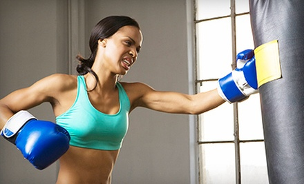 10, 20, or 30 Drop-In Kickboxing Classes with Gloves at Baltimore Martial Arts Academy (Up to 93% Off)