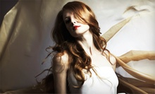 Haircut, Blow-Dry, and Style with Optional Partial or Full Highlights with Maryam Talash at Bella Gente (Up to 62% Off)