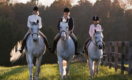 One or Two 60-Minute Group Horse Riding Lessons at Pleasant Valley Farm (49% Off)