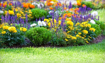 $20 for $40 Worth of Plants and Gardening Supplies at Garden World of Virginia