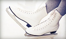 $25 for Four Weeks of Ice-Skating Lessons at Hazel Park Learn to Ice Skate ($50 Value)