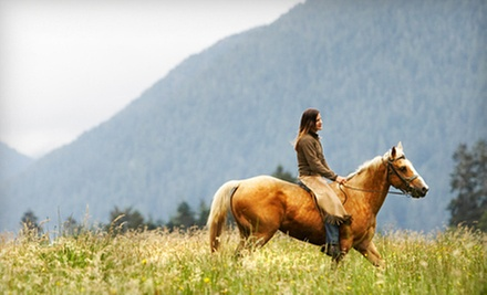 $69 for Two Sessions of Weekend Horsemanship Camp at Cougar Mountain Stables in Renton ($139.25 Value)