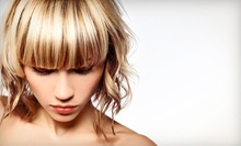 Haircut and Style with Optional Full Highlights at Kal's Kreations Hair Salon (Up to 53% Off)