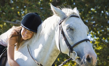 One, Three, or Five 30-Minute Private Horseback-Riding Lessons at Creekside Acres (Up to 68% Off)