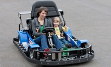 Mini Golf and Go-Karts for Two or Four at Camelot Park (Up to Half Off)