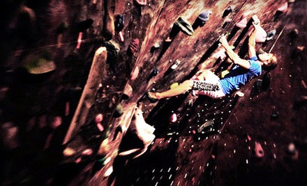 $25 for an Introductory Rock-Climbing Class with Complimentary Return Visit for Two at Vertical Ventures ($50 Value)