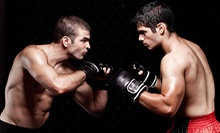 10 Martial-Arts Classes or One Month of Unlimited Classes at The Art of Self Defense Mixed Martial Arts (Up to 72% Off)