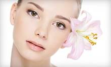Herbal Facial with Optional Microdermabrasion or Three Herbal Facials at Asha Salon and Spa (Up to 65% Off)
