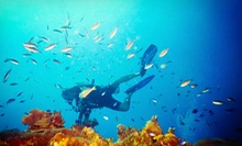 $25 for Discover Scuba Introductory Class for Two at Splash Water Sports ($50 Value)
