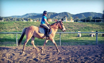 One, Three, or Five 60-Minute Horseback-Riding Lessons at Breezeway Farms (Up to 60% Off)