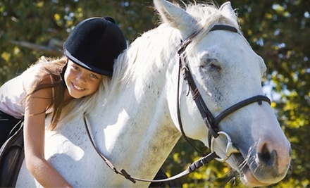 Four 60-Minute English-Style Horseback-Riding Lessons for One or Two at Lachlan Farm (Up to 65% Off)