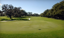 Nine-Hole Round of Golf for Two or Four with Pull-Cart Rentals at Winter Park Country Club (Up to 61% Off)