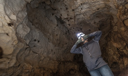 Black Hills Cavern Tour for Two or Four at Black Hills Caverns (46% Off)