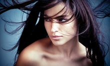 One or Two Brazilian Blowouts at Shears to You Salon & Mobile Boutique (Up to 53% Off)