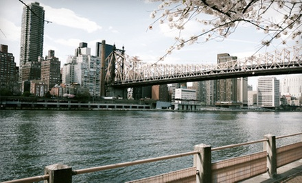 Three-Hour Walking Tour of New York for One, Two, or Four from Ryan's New York City Tours (80% Off)