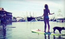 Two-Hour Guided Paddleboard Tour for Two, Four, or Six from Charleston Paddle Expeditions (Up to 56% Off)