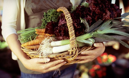 2.5-Hour Organic City-Farming Workshop with Seed Kit for One, Two, or Three at Fresh City Farms (Up to 59% Off)